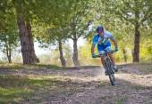Cyclist on mountain bike racing making a career in the field  — Zdjęcie stockowe