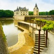 Chateau de Chenonceau Unesco medieval french castle, garden and — Stock Photo #54150549