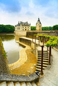Chateau de Chenonceau Unesco medieval french castle, garden and  — Stock Photo
