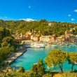 Portofino luxury village landmark, panoramic aerial view. Liguri — Stock Photo #54850191