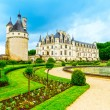 Chateau de Chenonceau Unesco medieval french castle and pool gar — Stock Photo #59727279