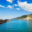 Camogli marina harbor entrance and lighthouse. Ligury, Italy — Stock Photo #66633983