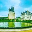 Chateau de Chenonceau Unesco medieval french castle and pool gar — Stock Photo #69025901