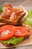 Hot big sandwich — Stock Photo