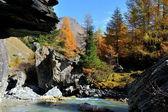 Mountain landscape - Innergschloss, Austria — Stock Photo