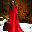 Beautiful woman with red cloak and suitcase — Stock Photo #63015787