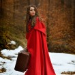 Beautiful woman with red cloak and suitcase alone in the woods — Stock Photo #63015815