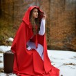 Beautiful woman with red cloak and suitcase alone in the woods — Stock Photo #63015821