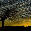 Beautiful sky at night with startrails — Stock Photo #63021939