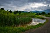 Beautiful summer landscape from Buzau, Romania — Stock Photo