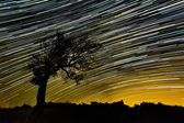 Beautiful sky at night with startrails — Stock Photo
