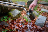 Source of spring water flowing in the mountain — Stock Photo