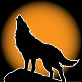 Wolf Howling in the Moonlight — Stock Vector