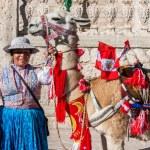 Lhama com bandeiras peruanas e mulher Arequipa Peru — Fotografia Stock  #57915377