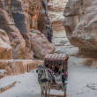 The siq path in Nabatean city of Petra Jordan — Stock Photo #57916237