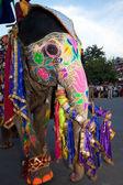 Colorful elephant at the Gangaur Festival Jaipur Rajasthan India — Stock Photo