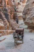 The siq path in Nabatean city of  Petra Jordan — Stock Photo