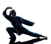 Karate vietvodao martial arts woman silhouette — Stock Photo