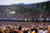 Botafogo supporters maracana stadium Rio de Janeiro Brazil — Fotografia Stock