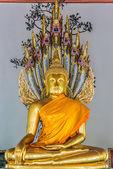 Golden Buddha statue Wat Pho temple bangkok Thailand — Stock Photo