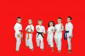 Athletes perform karate techniques on a red background — Stock Photo