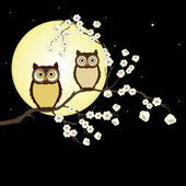 Pair of owls on branch in night — Stock Vector