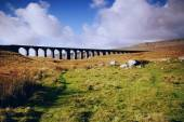 Ribblehead Railway Bridge - Settle - UK — Stock Photo