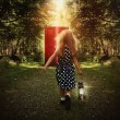 Child Walking in Woods to Glowing Red Door — Stock Photo #54373485