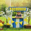 Boy Selling Yellow Lemonade at Stand — Stock Photo #54374119