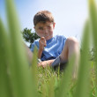 Bug Boy Searchin in the Grass — Stock Photo #73134603