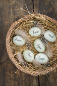 Eggs with messages — Stock Photo