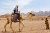 Arab boy rolls tourists on a camel. — ストック写真