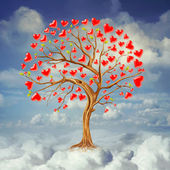 Tree of love — Foto de Stock