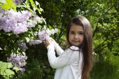 Little brunette  girl, dressed in a white shirt , she holds a blossoming branch of lilac in her hands — Stock Photo