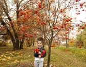 Little cute girl with dark curly hair  in the autumn forest with a bouquet of rowanberry — Stock Photo
