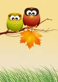 Owls with leaf — Stock Photo