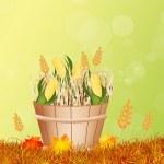 Happy thanksgiving day — Stock Photo #56712531