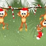 Monkeys at Christmas — Stock Photo #58055077