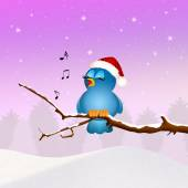 Bird singing at Christmas — Stock Photo