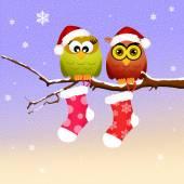 Owls at Christmas — 图库照片