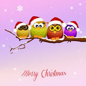 Owls celebrate Christmas — Stock Photo