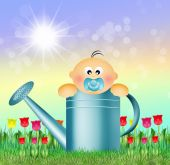 Baby in watering can — Stock Photo