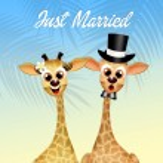 Wedding of giraffe — Stock Photo #59552417