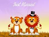 Lions in love — Stock Photo