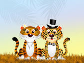 Leopard and tiger in love — Stock Photo