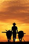 日没時のアジア農夫 — ストック写真