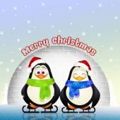 Penguins at Christmas — Stock Photo