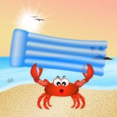 Crab on vacation — Stock Photo