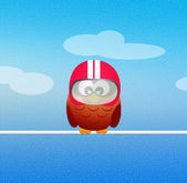 Owl motorciclyst — Stock Photo