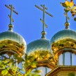 The golden dome on the  wooden russian church — Stock Photo #70938381